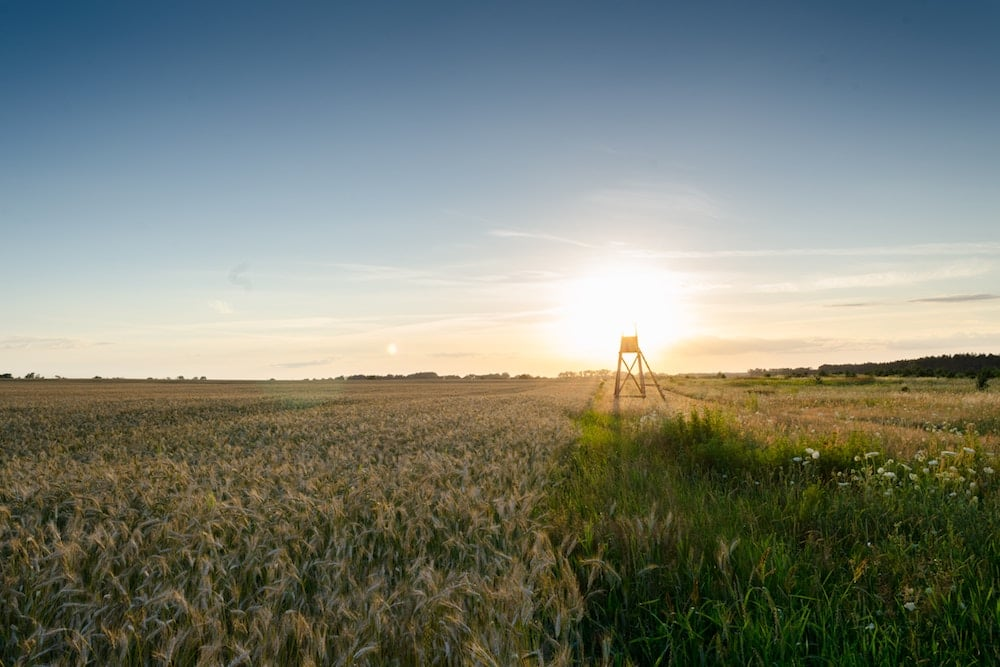 farm and crop Marshfield MO